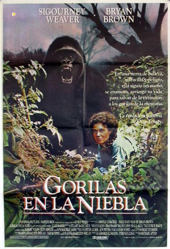 Gorilas en la niebla cine en violeta for Gorilas en la niebla